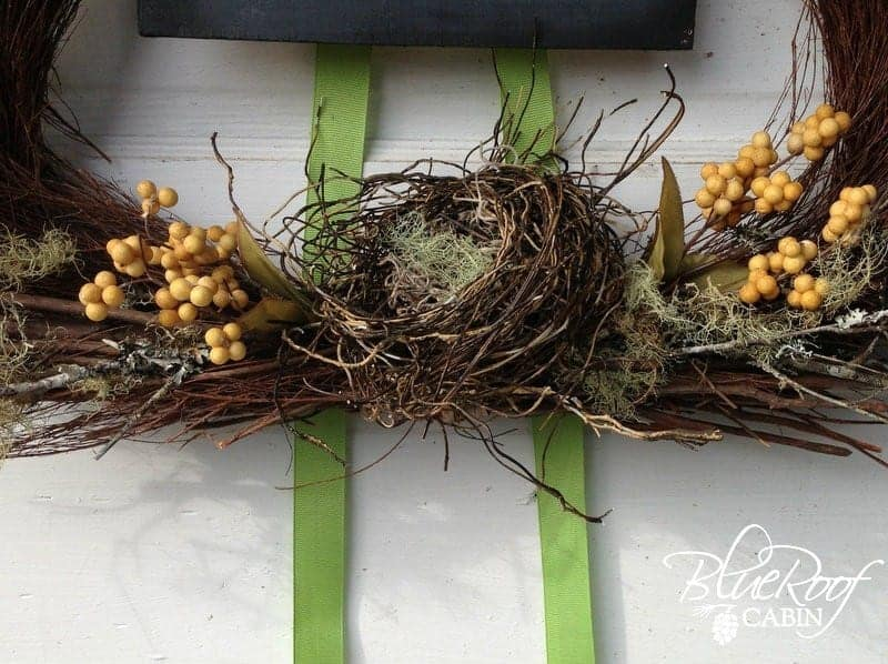 make a nest using grapevine