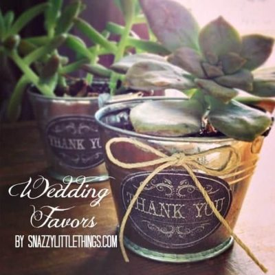 DIY: Vintage Succulent Wedding Favors