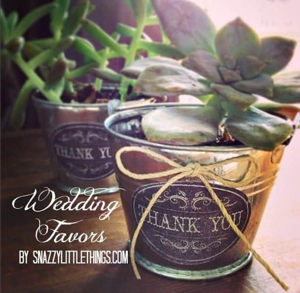 Succulent Wedding Favors By Snazzylittlethings