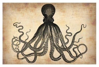 Octopus Poster Art