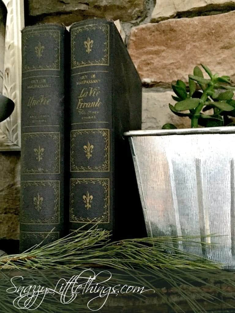 Winter Decorating Ideas - Old Books and Pine Garland