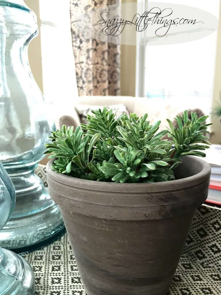 Winter Decorating Ideas - Potted Rosemary