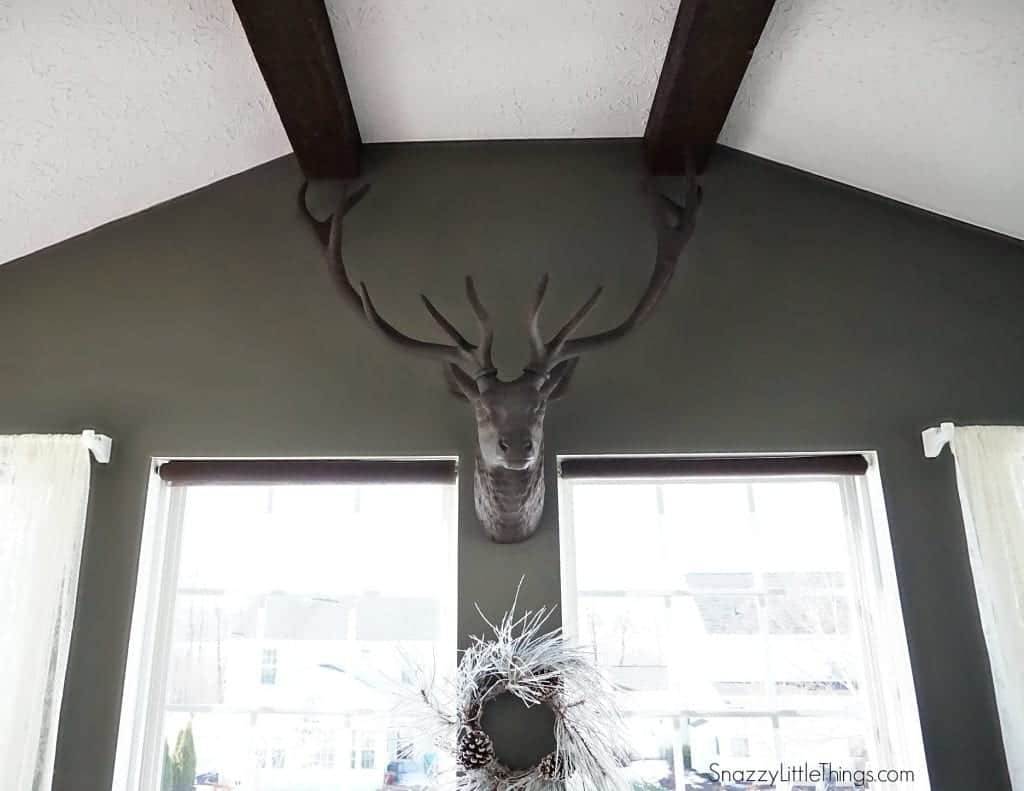 Stag Head in Sunroom