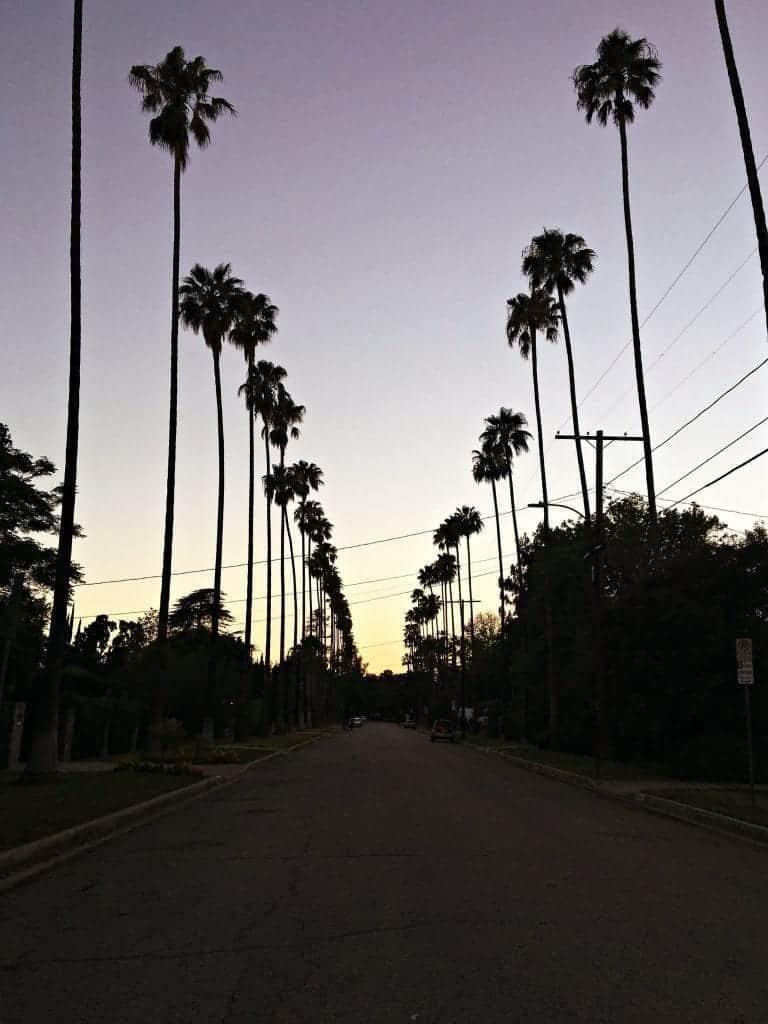 Hamlin Street View