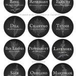 Herb Garden Vintage Labels (free printable)