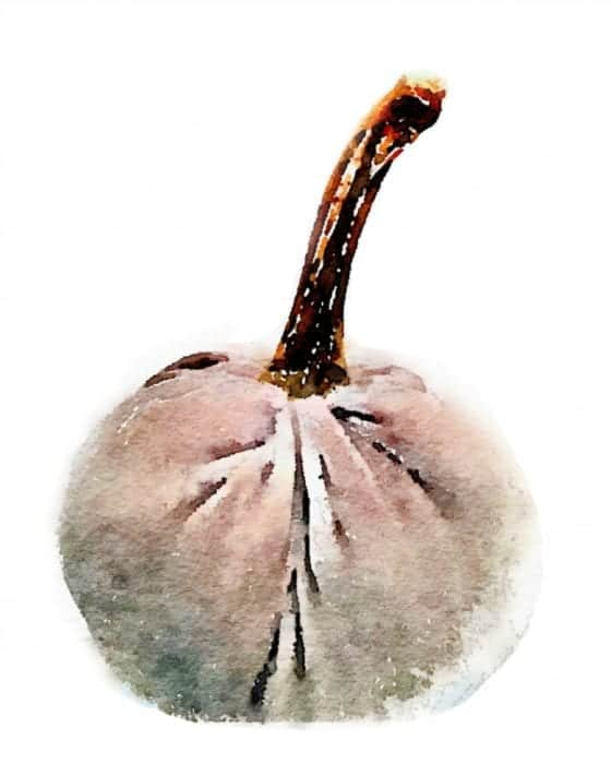 watercolor-pumpkin