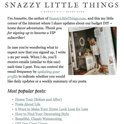 Mailchimp Newsletter Example by Snazzy Little Things