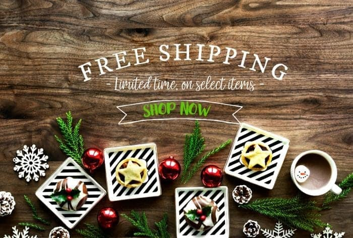 Free Shipping: The Shop at Snazzy Little Things