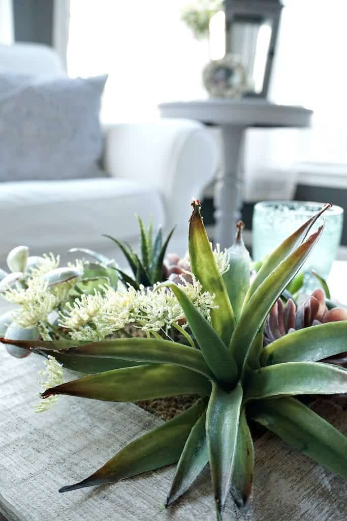 Sunroom Tour Spring Decor Close Up of Succulent Centerpiece