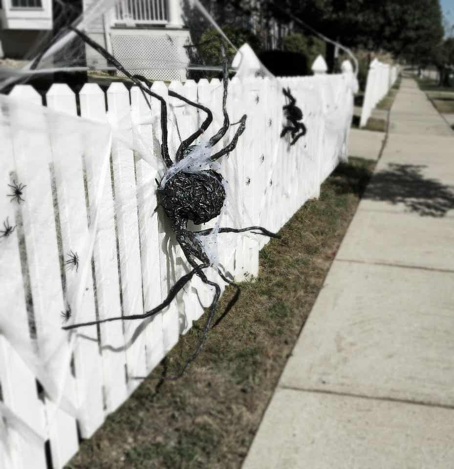 Halloween Spiders Picket Fence 2018