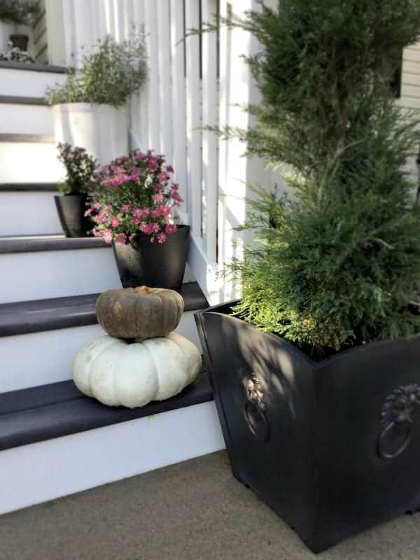 nod to fall front porch tour close up of right planter