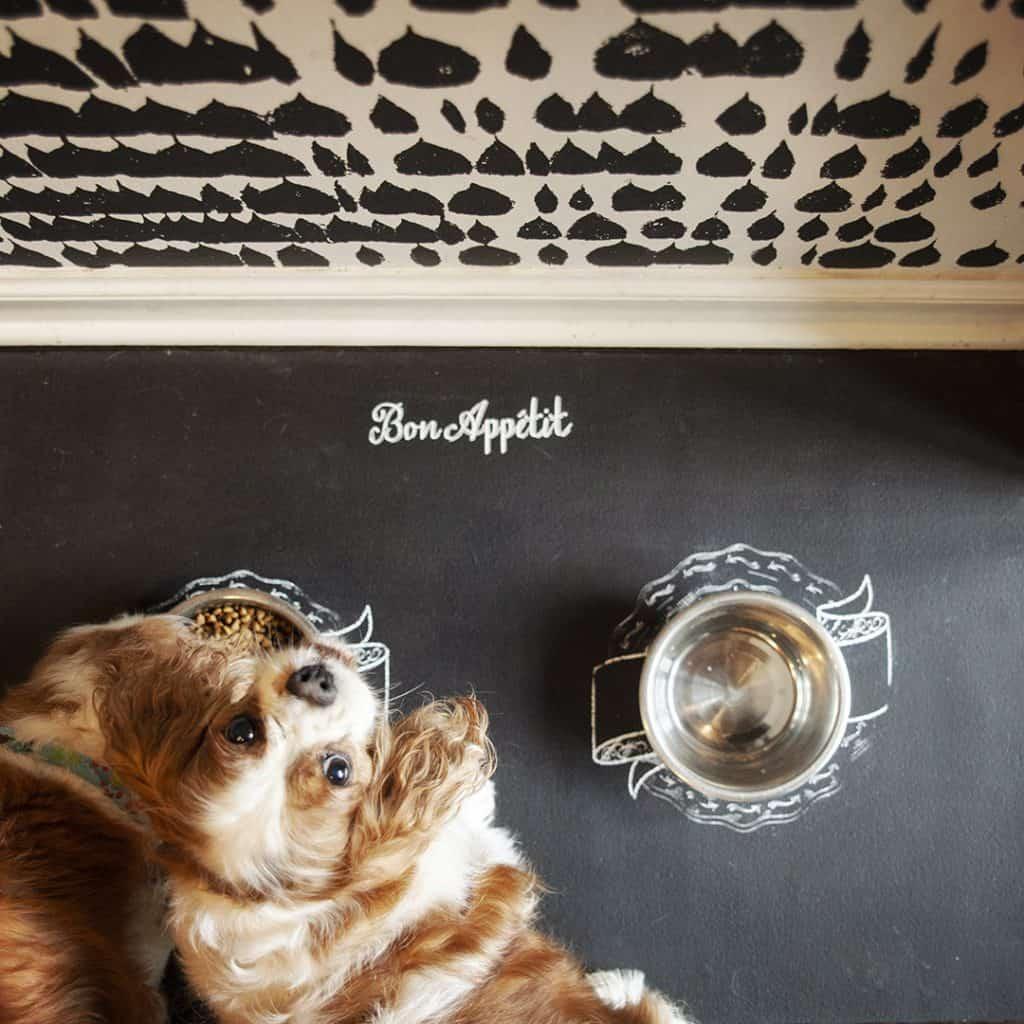 Mesh Stencil Dog Bowl