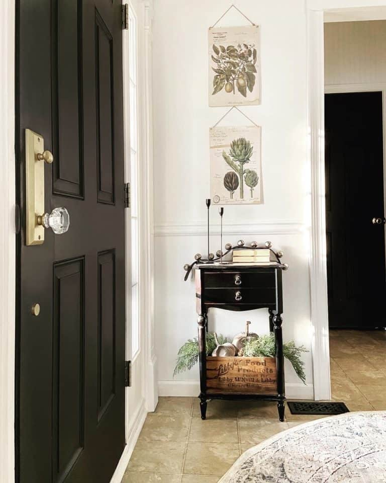 Black Interior Doors: BEST Paints to Use